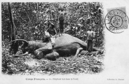 2 Cpa Du Congo Francais -pas Voyagées-beaux Plans - Congo Francese - Altri
