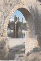 Asie SYRIE Syria HAMA WATER WHEELS-HAMA (Les Norias De Hama)*PRIX FIXE