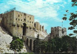 Asie SYRIE Syria  ALEPPO ALEP The Citadel La Citadelle*PRIX FIXE