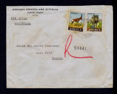 """Angola LOBITO Cover 1960 """" FACOCHERO + VACA DO MATO """" Faune Animals Animaux Portugal Sp4323"""