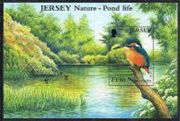 Jersey SGMS997 2001 Pond Life Miniature Sheet Unmounted Mint [12/12324/25D] - Jersey
