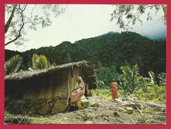 CPM Comores - Anjouan - Demeure Paysanne - Comores