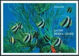 1995 Sierra Leone Pesci Fishes Poissons 2 Block MNH** RR1 - Sierra Leone (1961-...)