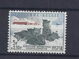 BELGIE - BELGIQUE 1031 Belgische Zuidpoolexpeditie  Postfris - Neuf - Without Hinged - 1957