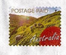 Australie / Australia (2016) - Moutons Dans Les Alpages  / Sheeps In The Pastures.