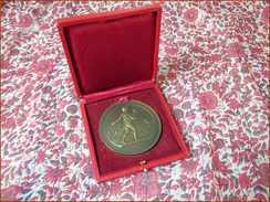 Grande Médaille Agriculture Semeur Lagrange Bronze Et Son Coffret Voir Photos 57 Mm TBE - Professionnels / De Société