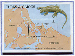 Turks Et Caiques ** Bloc N° 67 - Iguane De Terre -
