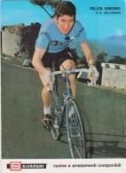 CYCLISME - Felice GIMONDI - Pub SALVARANI - Voir 2 Scans - Format 13x18 - Autres Collections