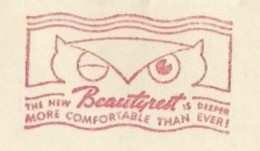 EMA METER STAMP FREISTEMPEL FRANQUEO MECANICO HIBOU CHOUETTE GUFO OWL KENOSHA USA 1939 - Eulenvögel