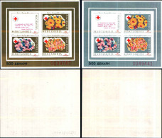 84249)  Macedonia-1993-settimana Della Croce Rossa 2-BF -n.2c-2d- Nuovi - Macedonia