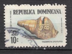 République Dominicaine, Coquillage, Shell, Instrument De Musique, Music Instrument, Sculpture, Trompette, Trumbet - Coquillages