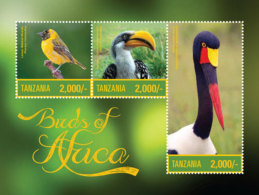 Tanzania-2016-Birds - Birds