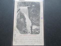 AK Österreich / DR 1902 Zweiter Wasserfall Im Gütle Bei Dornbirn. Friedr. Rusch's Buchhandlung Dornbirn - Dornbirn