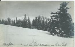 AK 0537  Rossfeld - Weg Nach Dem Purtschaller Haus Am Hohen Göll Um 1910 - Berchtesgaden