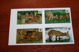 WWF  Ghana  Fauna Imperf