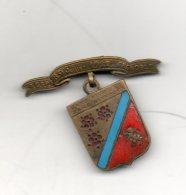 Epinglette. FGSPF. Grenoble. 8-9 Juillet 1922 - Gymnastique