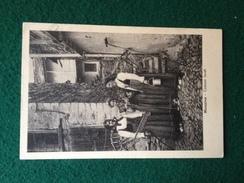 Cartolina Miazzina Costumi Locali Viaggiata  1951 Timbro Novara Verbania - Verbania