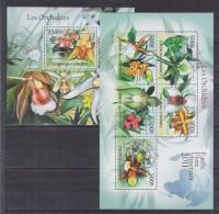 W12 Comoros - MNH - Plants - Flowers - 2011