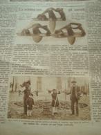 DOMENICA DELL'AGRICOLTORE 1937 SANTA MARIA DEL PIANO POLESINE ZIBELLO PARMA REGGIOLO CASTELFUSANO - Books, Magazines, Comics