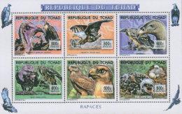 TCHAD 2016 ** Birds Of Prey Greifvögel Raubvögel Rapaces M/S - OFFICIAL ISSUE - A1641