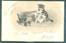 Relief - Gaufrée - Embossed - Prage - Chats - TBE Précurseur - Cats