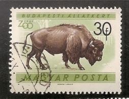 HONGRIE N° 1414 OBLITERE - Used Stamps