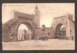 TUNIS - Bad El-Kadra ( Mulets , Ânes )