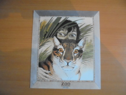 "EX-LIBRIS  (FOLLE IMAGE )  "" ZOO ""  ( FRANK BONIFAY  ) Non Signé - Illustrators A - C"