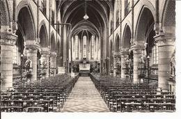 SINT-GILLIS (BIJ DENDERMONDE) : Kerk St Egidus - Dendermonde
