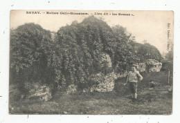 Cp , 59 , BAVAY , Ruines Gallo Romaines , Lieu Dit LES BOSSES , Voyagée - Bavay