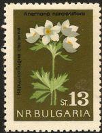 Bulgaria 1963 Iris Narcissiflora  Berghähnlein 1 Value  MNH