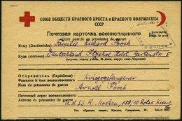 RUSSLAND 1946, Rotes Kreuz-Gefangenenkarte Aus Einem Gefangenenlager In Russland, Pracht