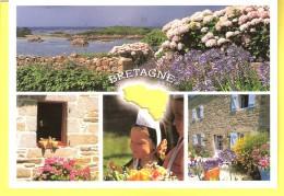 Silhouettes De Bretagne-Poésie De La Bretagne-Fierté Des Bretons-Hortensias (Hortensia)-Cachet+flamme De Penmarc'h (scan