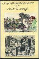 SCHLESWIG-HOLSTEIN Briefsammlung Holsteinisches Eisenbahn Post-Speditons Bureau, Sauber Beschriftete Sammlung Mit 19 Bri