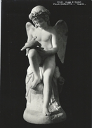Villa Carlotta - Cupido.    # 05187 - Sculpturen