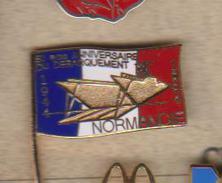 PIN'S 50 EME ANNIVERAIRE DU DEBARQUEMENT  NORMANDIE - Army