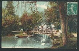 Tours - Jardin Des Prébendes D'Oé , Les Cygnes Au Pont Du Haut     - Obe0412