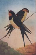 """CPA ANIMAL L'Hirondelle De Cheminée Reproduction De Dessins """"Les Oiseaux De France"""" - Birds"""