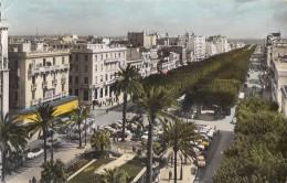 TUNISIA - Tunis - Avenue Habib Bourguiba