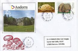 ANDORRA. Truffe Noire & Morille Des Pins, Sur Lettre De La Principauté, Adressée En Espagne - Andorra Francese