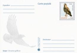 Moldova 2016 - Birds Of Prey - Short Toed Snake Eagle - Prepaid Postcard - Stationary