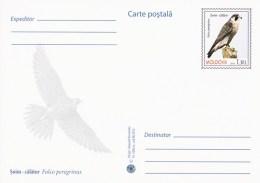 Moldova 2016 - Birds Of Prey - Peregrine Falcon - Prepaid Postcard - Stationary