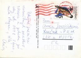 K9861 - Slovakia (1997) 085 03 Bardejov 8 (red Machine Postmark) Postcard; Tariff: 5 Sk (stamp: Falco Peregrinus Tunst.)