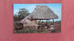 > Nicaragua Typical Ranch Ref  2372 - Nicaragua