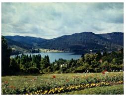 (DEL 715) France - Lac De Gerardmer