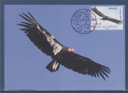 Nature Animaux Disparus Ou Menacés D'extinction Carte Postale 1er Jour N°4375 Paris 20.6.09 Condor De Californie