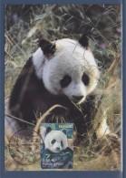 Nature Animaux Disparus Ou Menacés D´extinction Carte Postale 1er Jour N°4372 Paris 20.6.09 Panda Géant