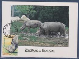 Nature Animaux Disparus Ou Menacés D´extinction Carte Postale N°4373 Saint Aignan 22.6.09 Rhinocéros ZooParc Beauval