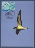 Nature Faune En Disparition France Outre-Mer 1er Jour Carte Postale N°4036 La Plaine Des Cafres 28.4.07 Pétrel De Barau