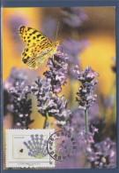 Nature Carte Postale, Timbre Du Collector IDT LP20g Col84 Grignan (Drome) 22.4.11 (papillon Sur) La Lavande